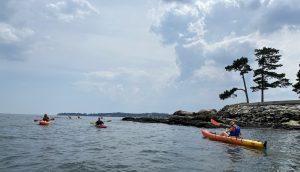 Summer Cohort Success